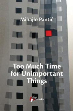 too much time for unimportant things mihajlo pantić
